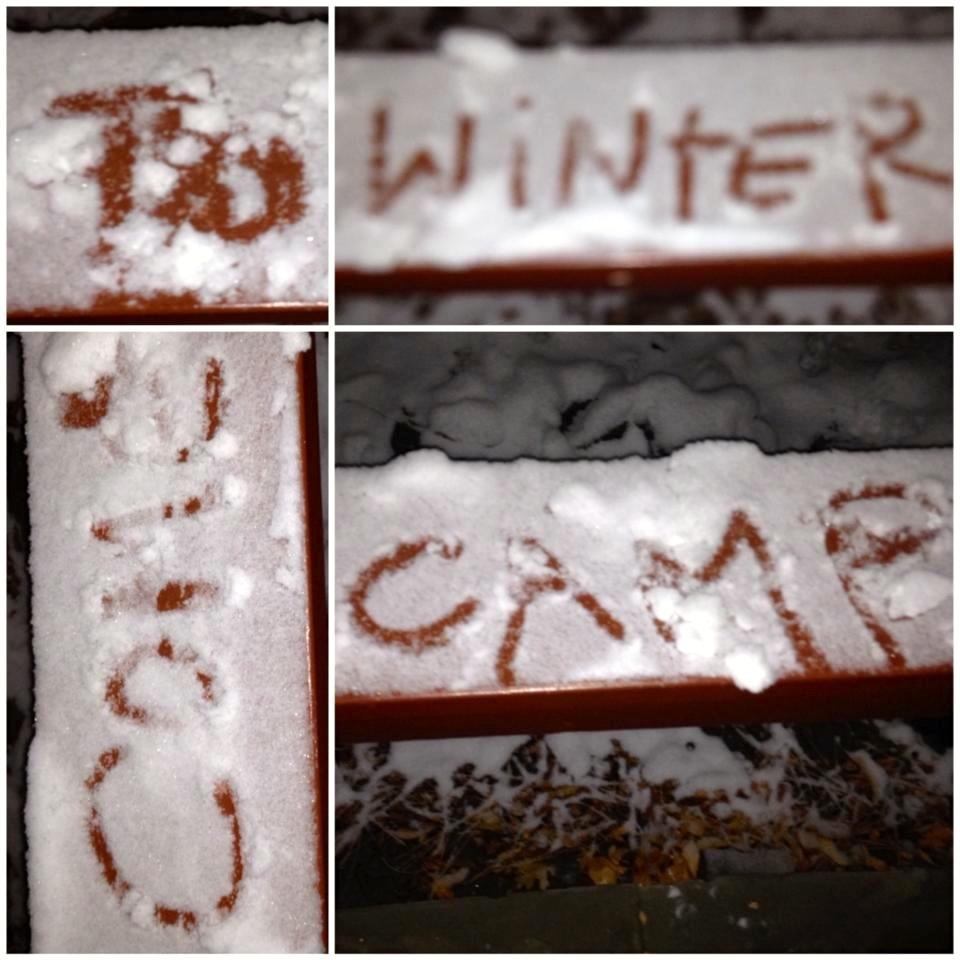 winter-camp-2014